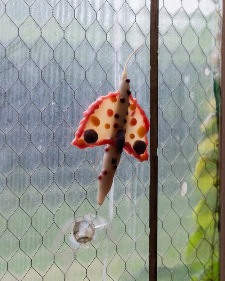 A moth-shaped candle is pressed against a window screen
