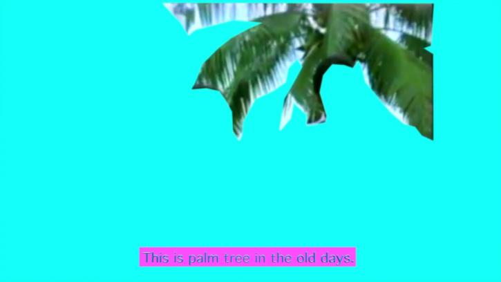 """A digital image of a palm tree against a bright turquoise background. At the bottom of the image, text reads: """"This is a palm tree in the old days."""""""
