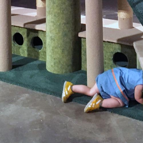 Image of the artist's daughter crawling into a play place