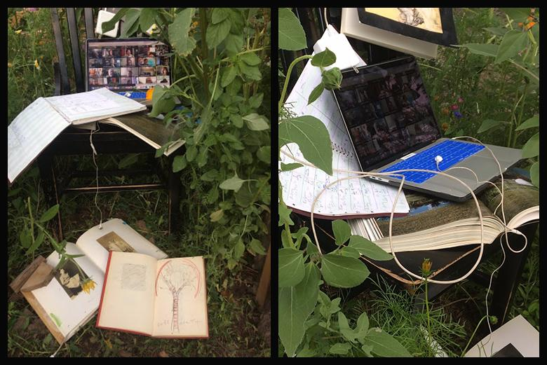 Installation with laptop and books in foliage by Tim Mullane from APSI 2020